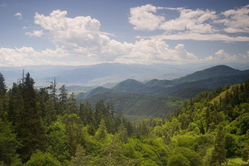 Borjomi mountains