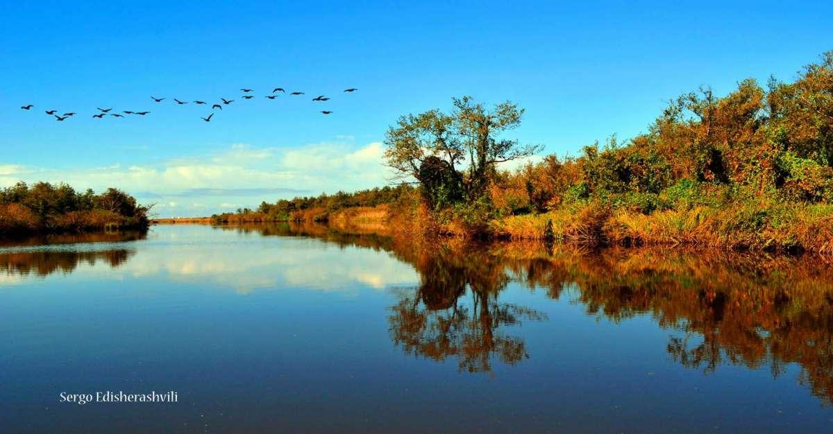 Палиастоми – очаровательное озеро в Колхидском заповеднике