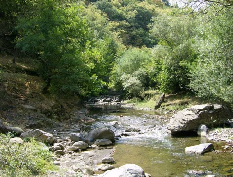 reka Algeti