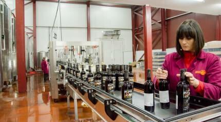 Дегустация грузинских вин от «Вазиани Компани»