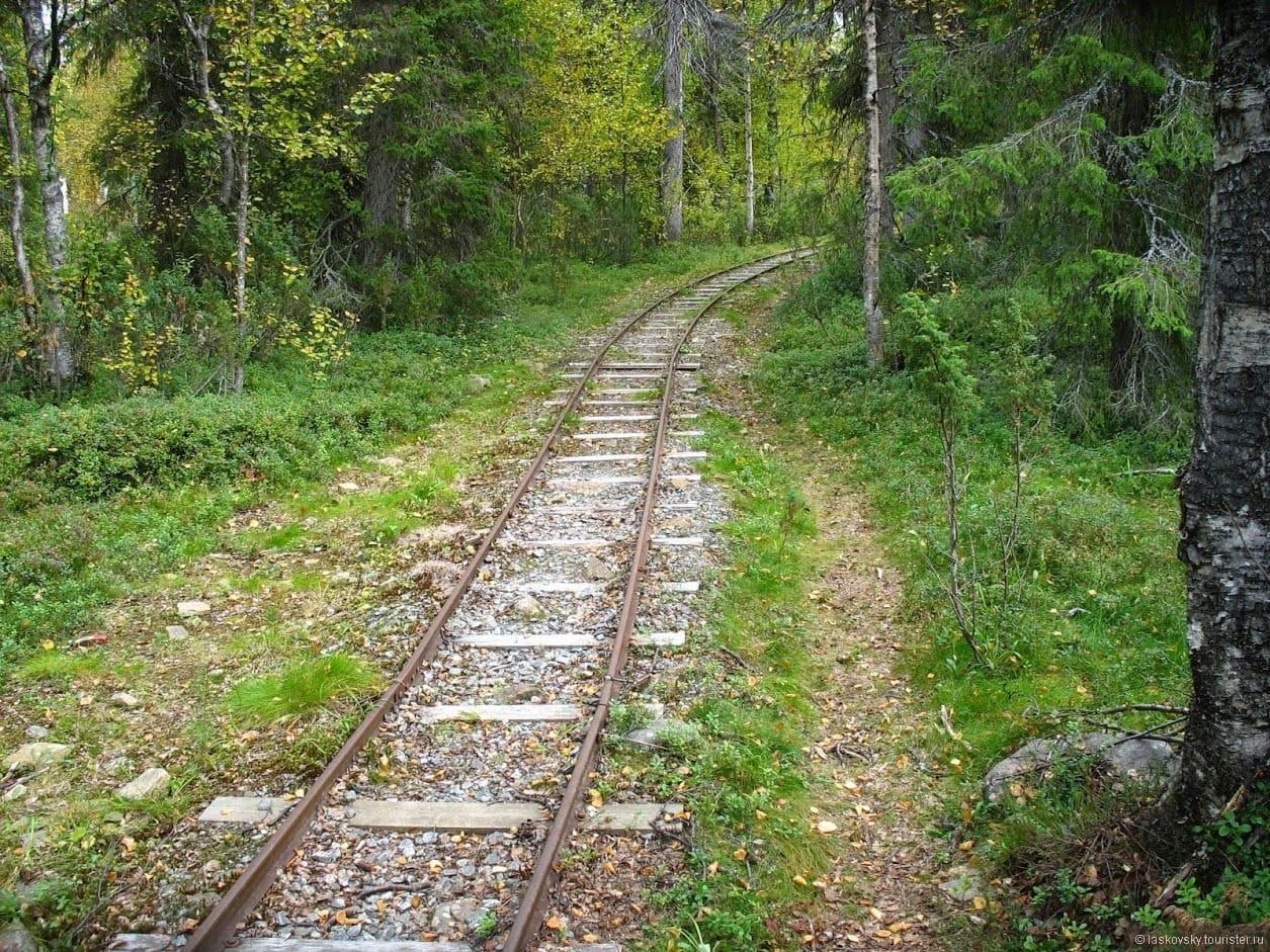 На поезде по горным серпантинам. Узкоколейная железная дорога Боржоми-Бакуриани