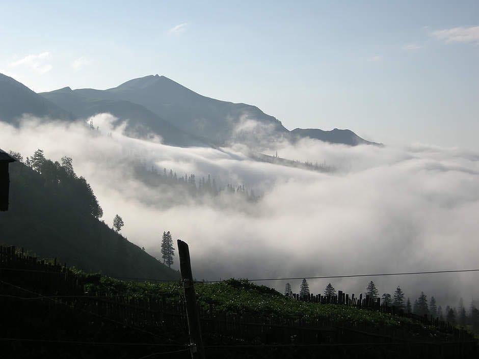 Кавказская пленница: страсти по Батуми