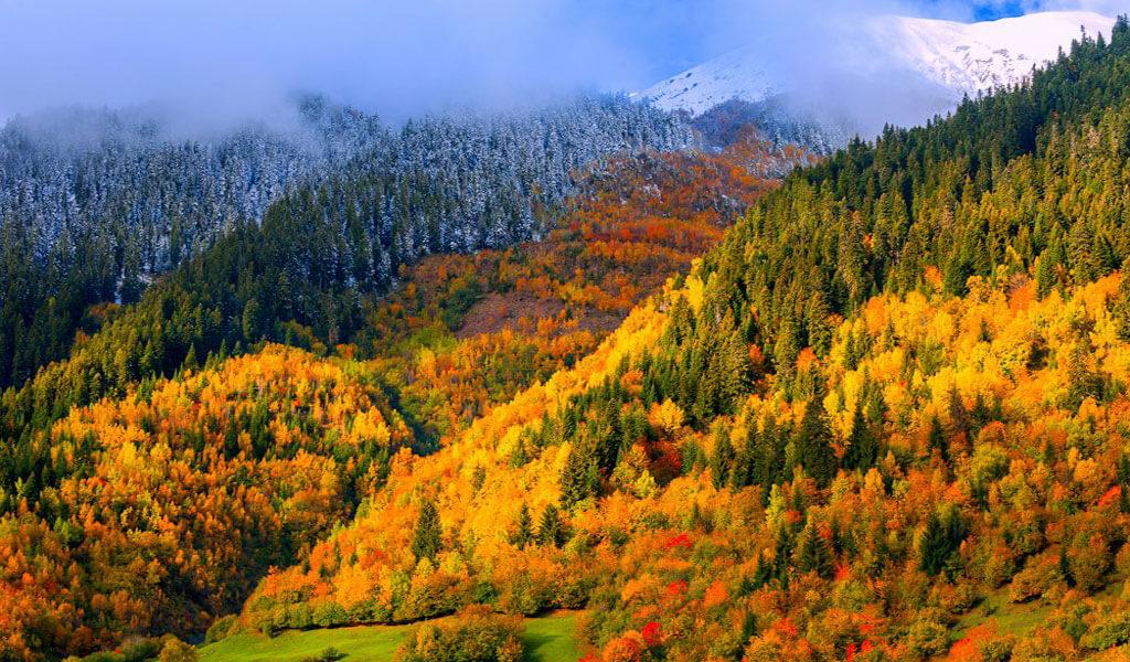 Погода в Грузии по сезонам и месяцам - когда и куда лучше ехать?