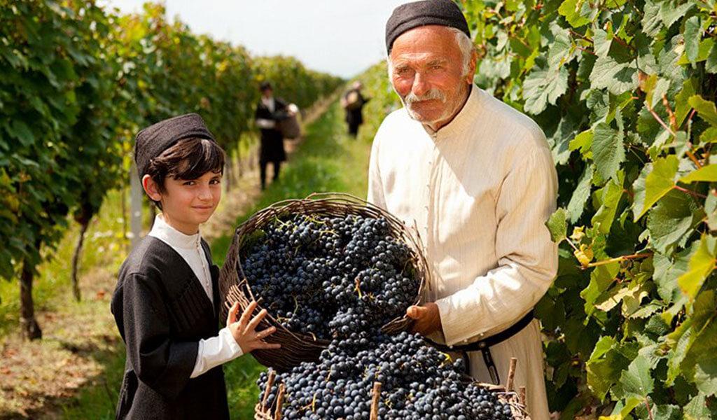 Франция признала, что Грузия колыбель виноделия