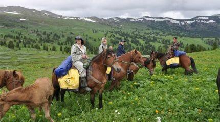 конная экскурсия в Грузию